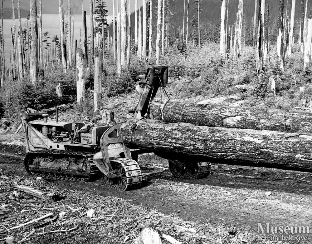 Cat Logging Operations At Bendickson Logging Campbell