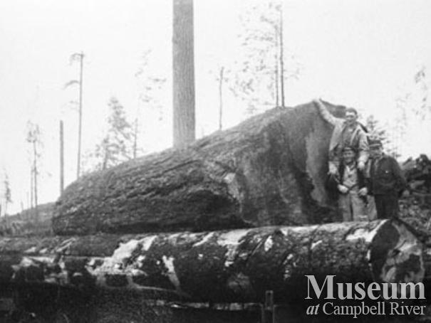 Loggers from Bloedel Stewart & Welch Camp 4