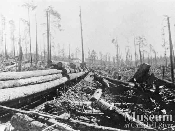Load of logs near International Timber Co. Camp 2