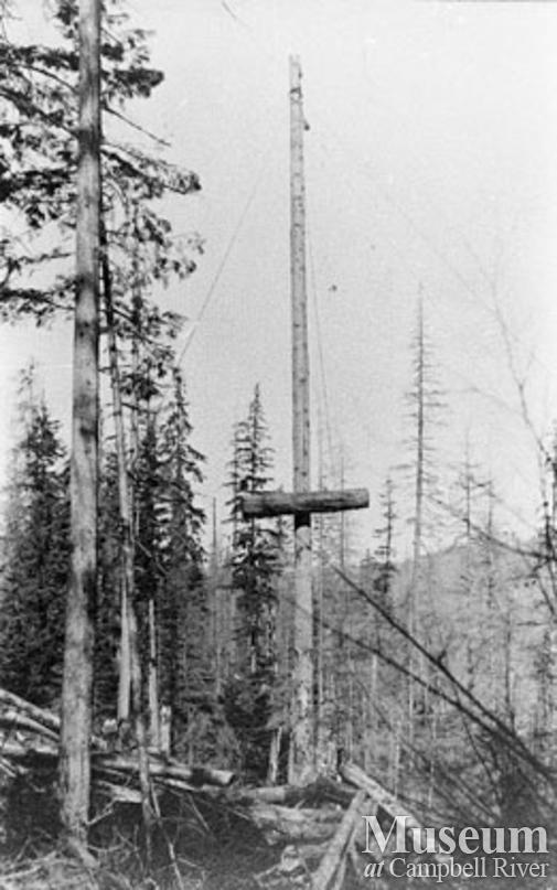 Quadra Island logging operation