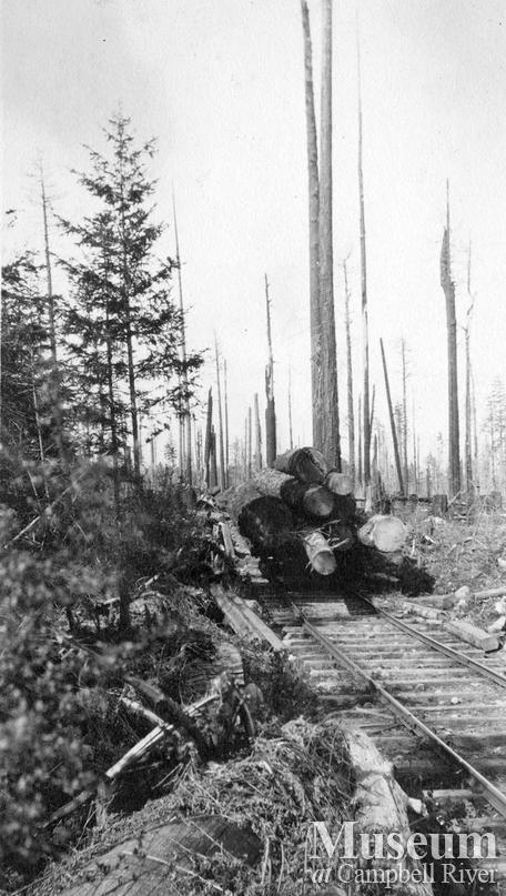 Abbott Timber Co.logging operations