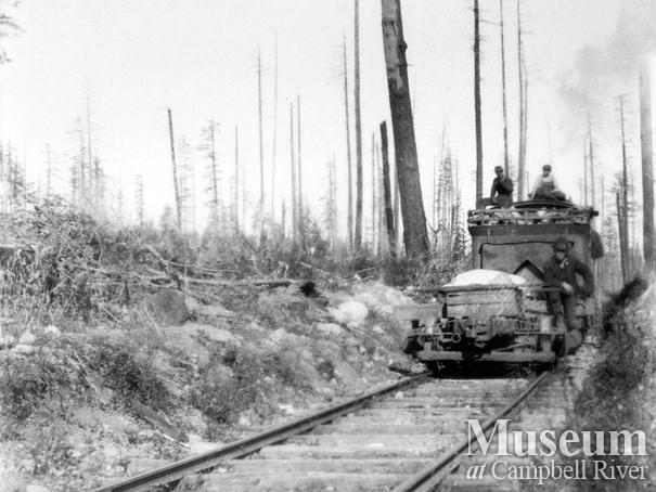 Abbott Timber Co. logging operations