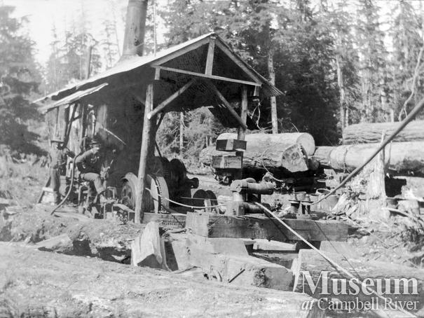 Steam donkey in operation on Quadra Island