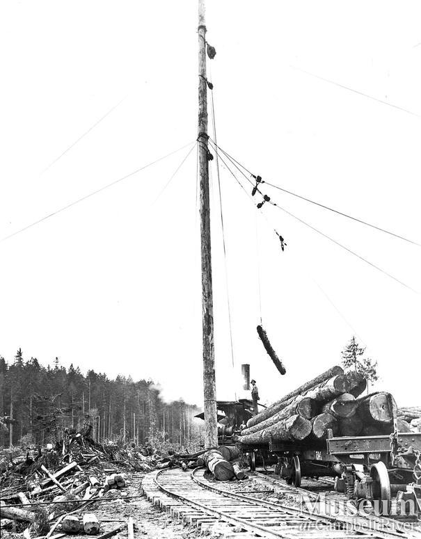 Spar tree at work loading a railcar in Elk Bay