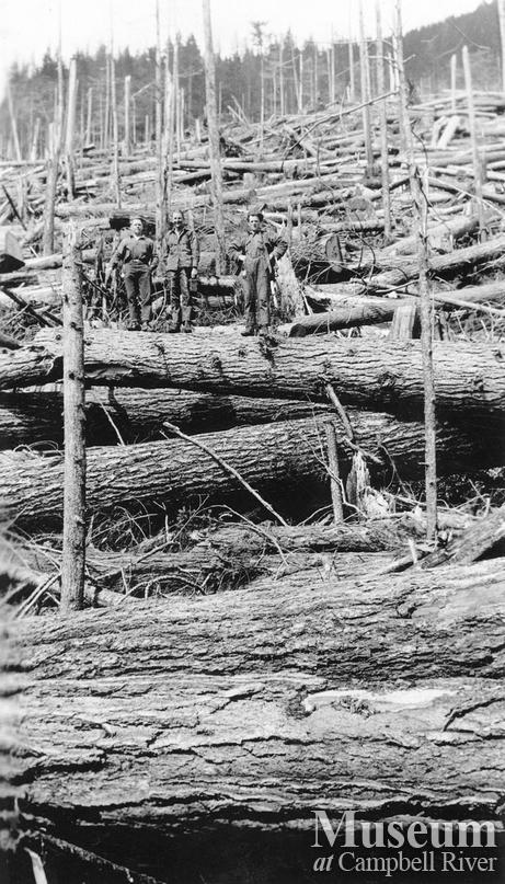 Logger in fallen timber near Menzies Mountain
