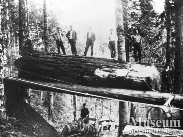 Log chute over the Island Highway near Campbell River