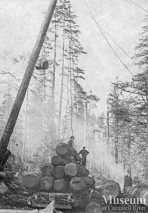 Haig Timber Co. operations near Campbell River