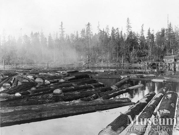 Log booms at Menzie's Bay