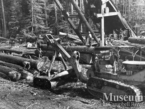 northwest canadian forest products limited Golden field investments ltd / golden field forest products ltd: other states : golden pacific homes: northwest forest products llc: jackson : northwest forestry company: oregon-canadian forest products inc washington : osprey custom sawing.