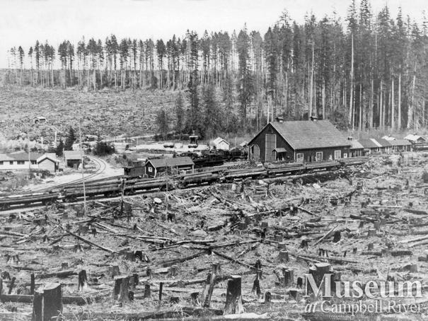 Elk River Timber Co. Camp 8 near Echo Lake