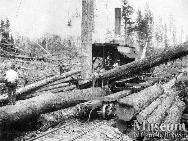 Log loading at Elk River Timber Co. operations