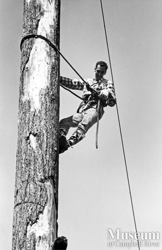 Ernie Alexander, champion tree climber