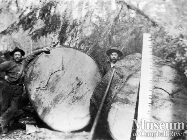 Bendickson Logging operations on Hardwicke Island