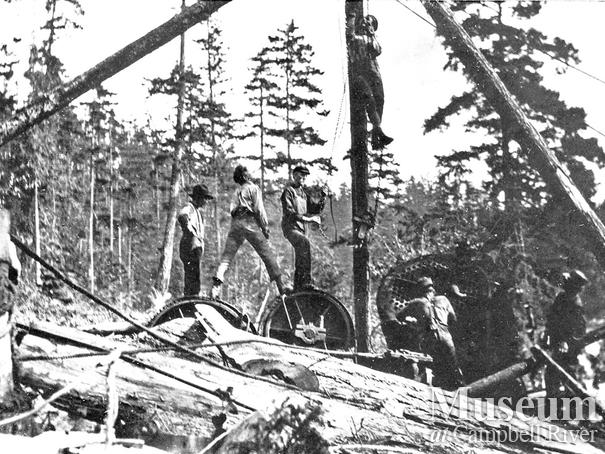 Bendickson Logging operations