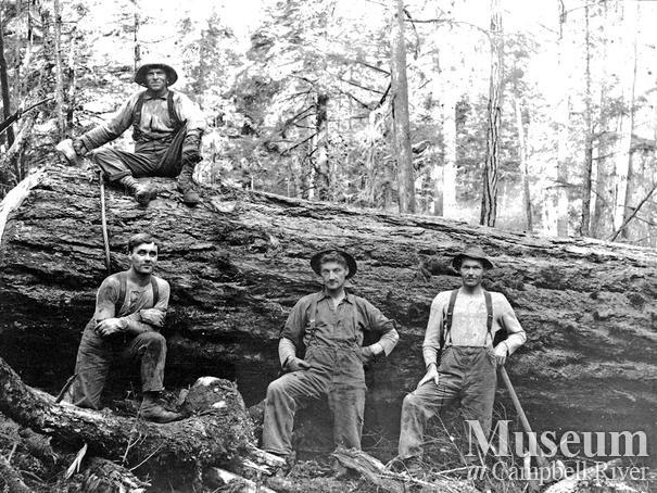 Bendickson Logging crew at Quadra Island operations