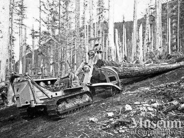 Cat logging operations at Bendickson Logging