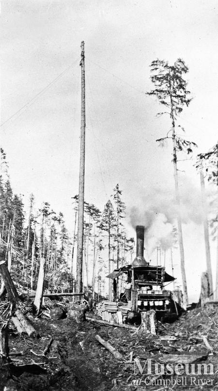 Donkey and spar tree at Bendickson Logging operations