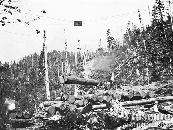 Loading logs at Elk River Timber Co operations