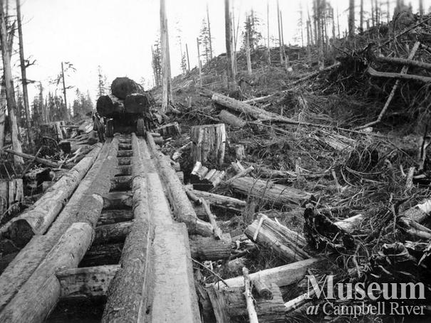 Byles and Groves logging