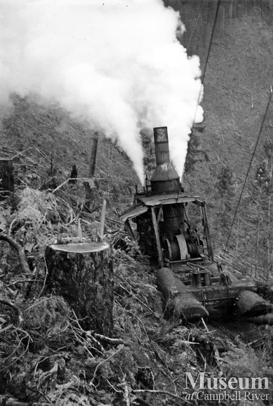 Steam donkey in operation
