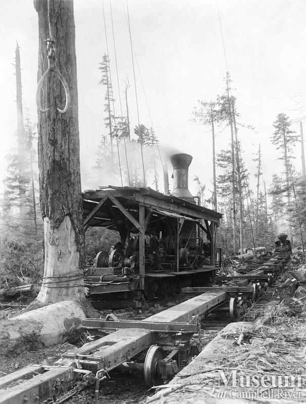 Steam donkey near Menzie's Bay