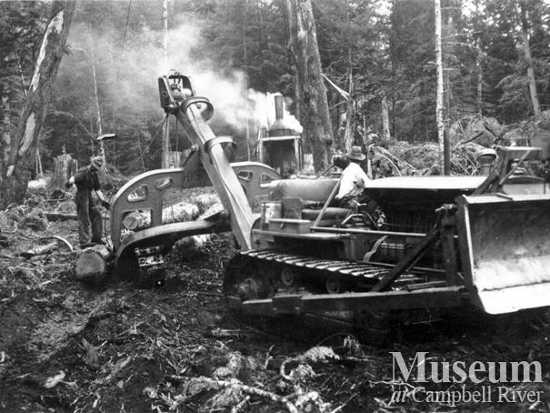 Cat logging near Dent Island