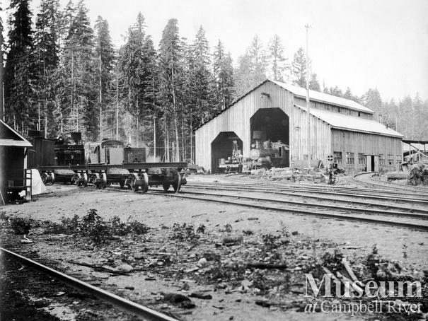 Merrill Ring Wilson Ltd. camp at Big Tree Creek