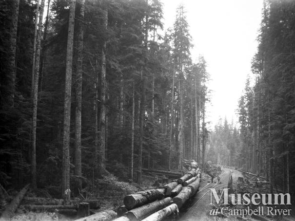 Wood and English operations at Nimpkish