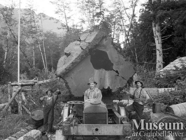 Dot Logging Co.