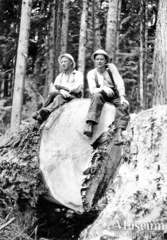 Fallers atop a log near Woss Camp