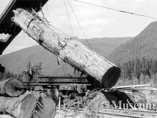 Loading logs