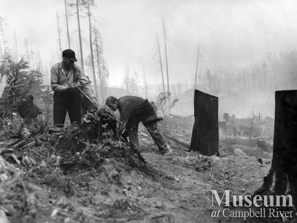 Cleaning up after the Sayward Fire