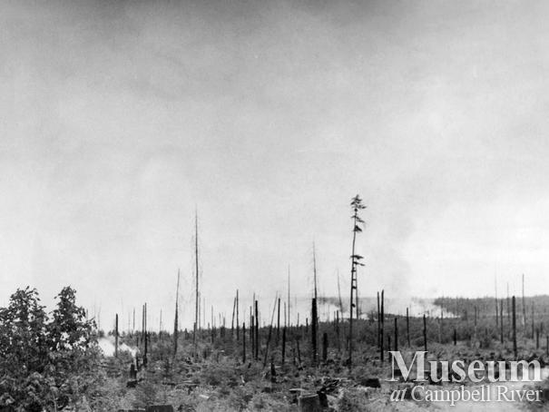 Fire advancing towards Forbidden Plateau