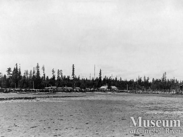 View of the Oyster Bay Logging Camp