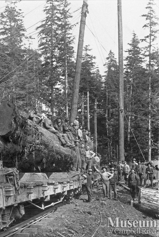 Comox Logging Co. crew on loaded railroad car