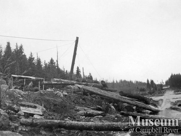Log dump Coal Creek Logging Ltd., Granite Bay