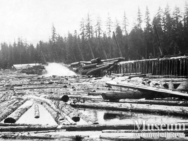 Log dump at Englewood operations, Nimpkish