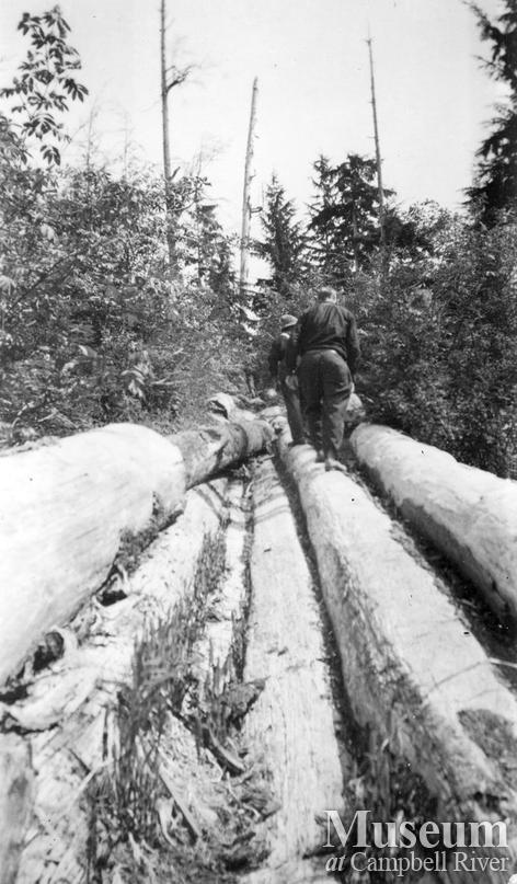 Logging flume on Thurlow Island