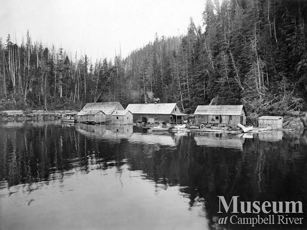 Clark and Lyford Ltd. Camp 2