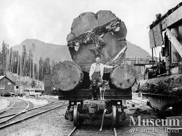 A loaded train car