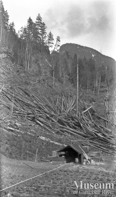 Logging in Bute Inlet